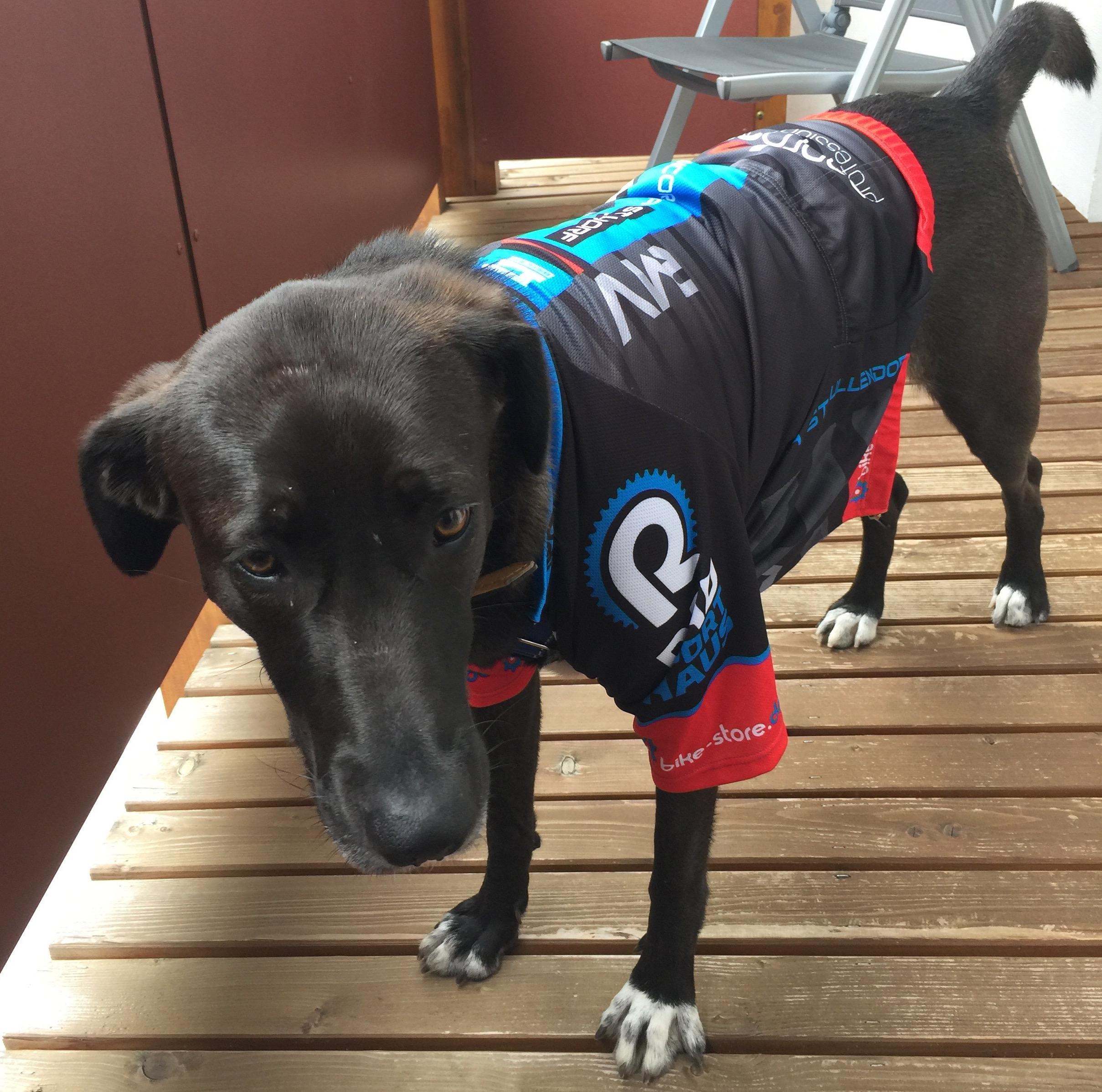 Traildog Lenny