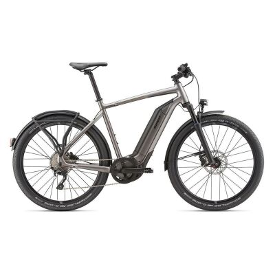 GIANT QUICK-E+ E-Bike Commuter 2020 | Metallicanthracite Matt