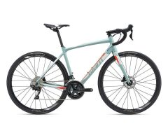 GIANT CONTEND SL 1 DISC Rennrad 2019 | Greygreen-White Matt