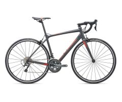 GIANT CONTEND SL 2 Rennrad 2019 | Gunmetalblack-Grey-Red...
