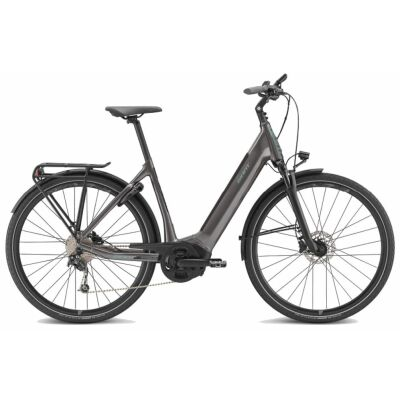 GIANT ANYTOUR E+ 2 LDS E-Bike Damen Trekkingrad 2020 | Spacegrey
