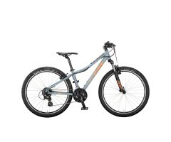 KTM WILD SPEED 26 34 Kinderrad 2020 | epicgrey matt...