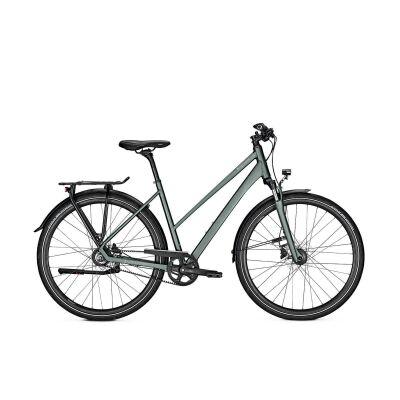 KALKHOFF ENDEAVOUR 8 Trapez Trekking Fahrrad 2021 | techgreen matt