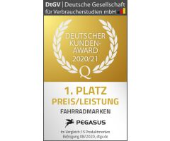 "Pegasus Estremo P18 HE Trekkingrad 28"" Diamant Gang Getriebeschaltung black chrome matt | 2020"
