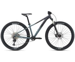 Liv Tempt 0 Damen MTB Hardtail 2021 | dark iridescent /...