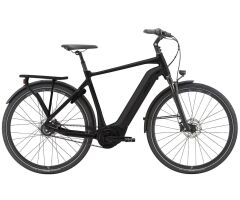 Giant DailyTour E+ 0 BD GTS City Ebike 2021 | gunmetal black