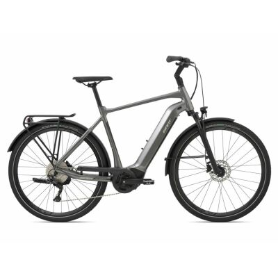 Giant AnyTour E+ 2 GTS Trekking Ebike 2021 | space grey
