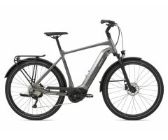 Giant AnyTour E+ 2 GTS Trekking Ebike 2021 | space grey