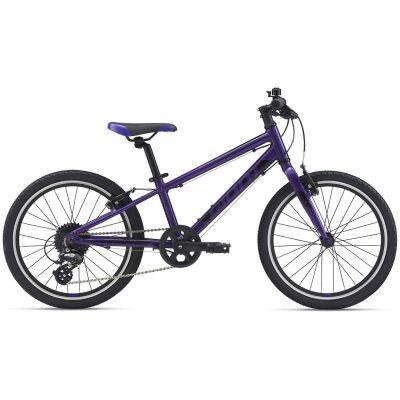 Giant ARX 20 Kinderrad 2021 | purple