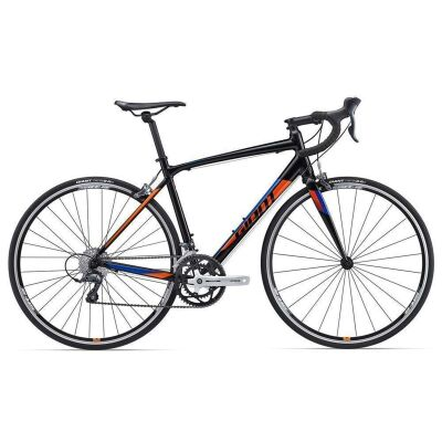 GIANT CONTEND 3 2017