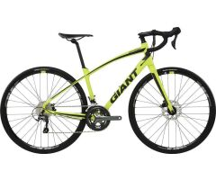GIANT ANYROAD 1 Green Gravelbike 2017